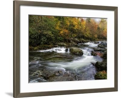 Autumn Dream-Danny Head-Framed Photographic Print