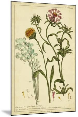 Iacea, Pl. CLll-Phillip Miller-Mounted Art Print
