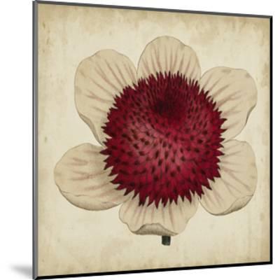 Pop Floral IV-Vision Studio-Mounted Art Print
