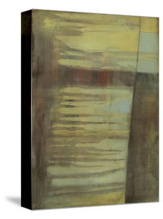 Excavate I-Jennifer Goldberger-Stretched Canvas Print
