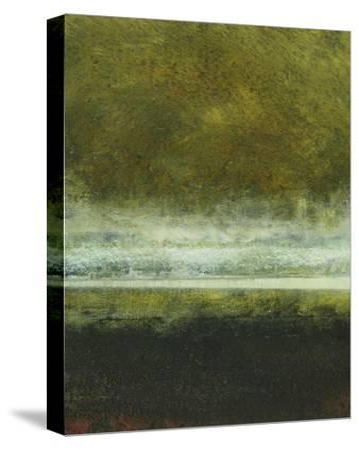 Paths III-Sharon Gordon-Stretched Canvas Print