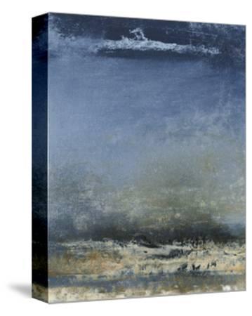 Mystic II-Sharon Gordon-Stretched Canvas Print