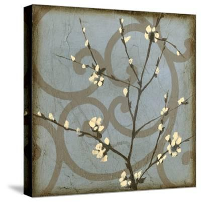 Blossom Branch II-Jennifer Goldberger-Stretched Canvas Print