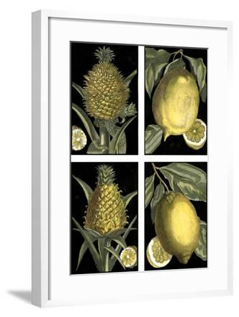 Miniature Fruit--Framed Art Print