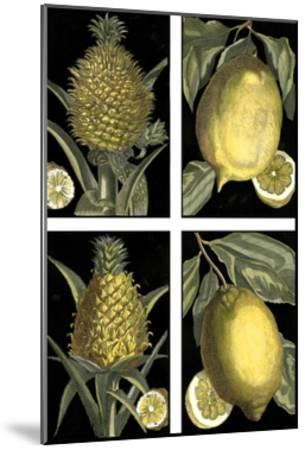 Miniature Fruit--Mounted Art Print