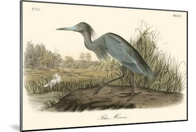 Blue Heron-John James Audubon-Mounted Art Print