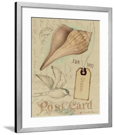Postcard Shells IV-NancyShumaker Pallan-Framed Art Print