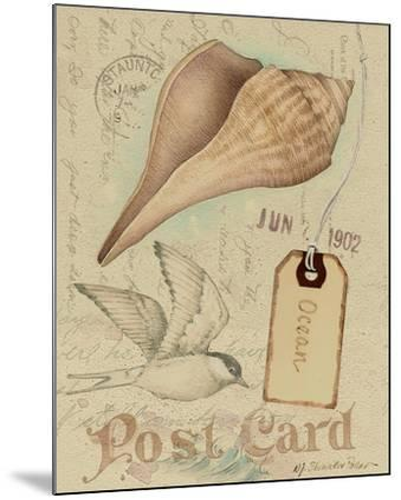Postcard Shells IV-NancyShumaker Pallan-Mounted Art Print