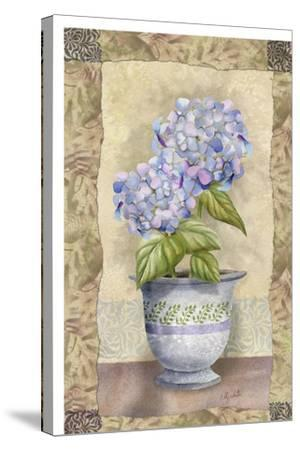 Spring Hydrangea-Abby White-Stretched Canvas Print