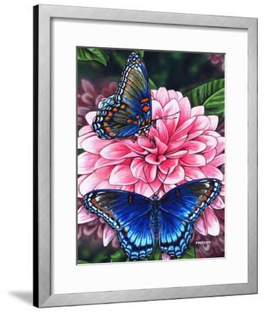 Red Spotted Purple-Marilyn Barkhouse-Framed Art Print