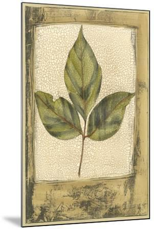Small Spring Foliage II-Jennifer Goldberger-Mounted Art Print