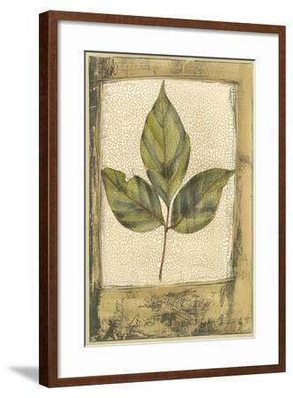 Small Spring Foliage II-Jennifer Goldberger-Framed Art Print