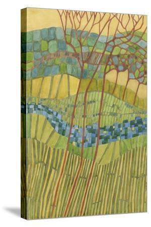 Kaleidoscope-Vanna Lam-Stretched Canvas Print