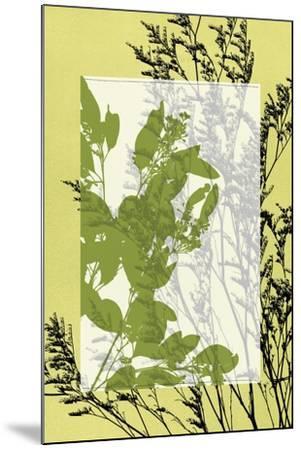 Small Translucent Wildflowers III-Jennifer Goldberger-Mounted Art Print