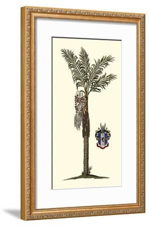 Elongated Exotic Palm I--Framed Art Print