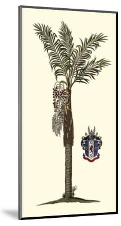 Elongated Exotic Palm I--Mounted Art Print