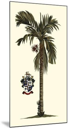 Elongated Exotic Palm II--Mounted Art Print