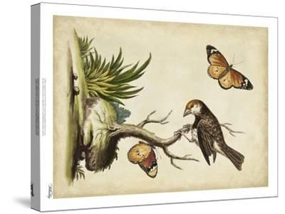 Companions in Nature II-George Edwards-Stretched Canvas Print