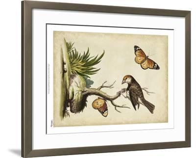 Companions in Nature II-George Edwards-Framed Art Print