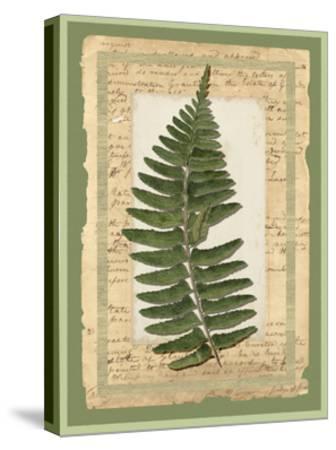 Woodland Scrapbook I-Vision Studio-Stretched Canvas Print