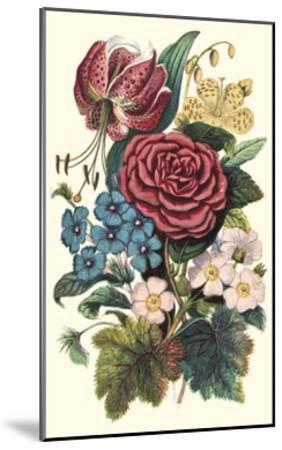 Garden Gathering III--Mounted Art Print