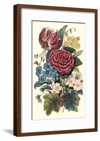 Garden Gathering III--Framed Art Print