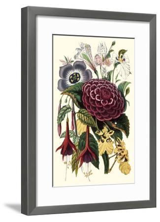 Garden Gathering II--Framed Art Print