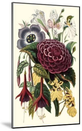 Garden Gathering II--Mounted Art Print