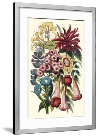 Garden Gathering I--Framed Art Print