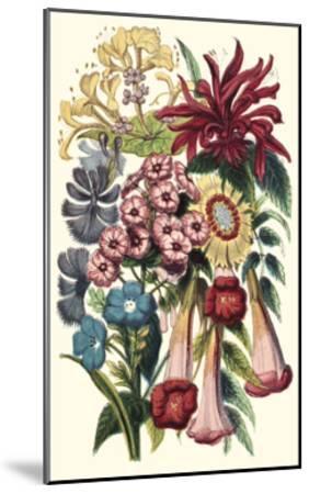 Garden Gathering I--Mounted Art Print