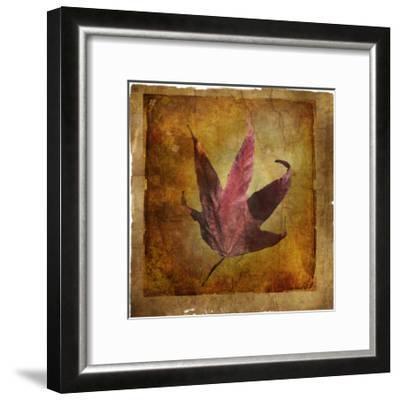 Fallen II-Ryan Hartson-Weddle-Framed Photographic Print