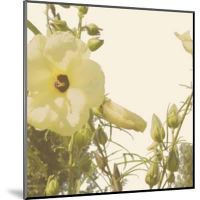 Vintage Bloom III-Megan Meagher-Mounted Art Print