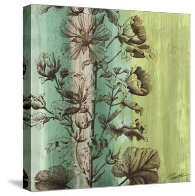 Painted Botanical II-John Butler-Stretched Canvas Print