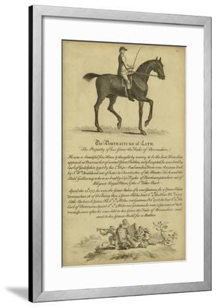 Horse Portraiture III--Framed Art Print