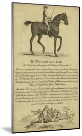 Horse Portraiture III--Mounted Art Print