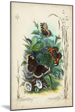 Victorian Butterfly Garden IV-Vision Studio-Mounted Art Print