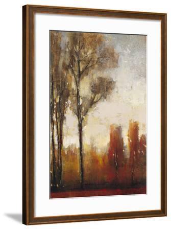 Tall Trees II-Tim O'toole-Framed Art Print
