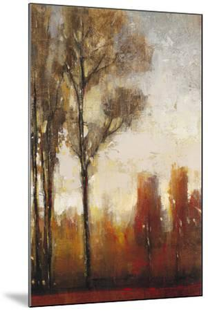 Tall Trees II-Tim O'toole-Mounted Art Print