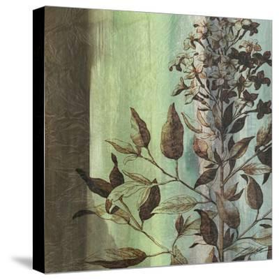 Painted Botanical IV-John Butler-Stretched Canvas Print
