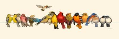 Bird Menagerie I-Wendy Russell-Stretched Canvas Print