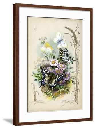 Victorian Butterfly Garden V-Vision Studio-Framed Art Print
