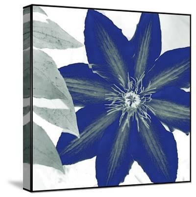 Indigo Star III-Sharon Chandler-Stretched Canvas Print