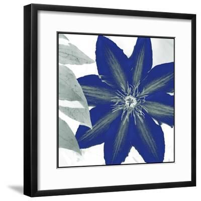 Indigo Star III-Sharon Chandler-Framed Art Print