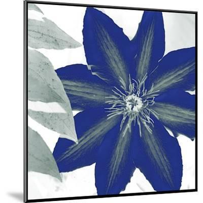 Indigo Star III-Sharon Chandler-Mounted Art Print