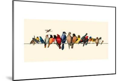 Bird Menagerie III-Wendy Russell-Mounted Art Print