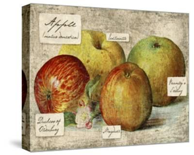 Fresco Fruit VIII-Kate Ward Thacker-Stretched Canvas Print
