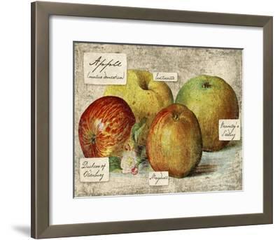 Fresco Fruit VIII-Kate Ward Thacker-Framed Art Print