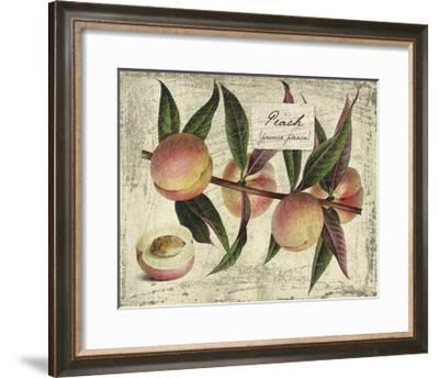 Fresco Fruit IX-Kate Ward Thacker-Framed Art Print
