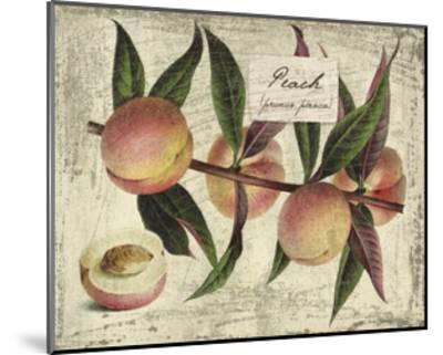 Fresco Fruit IX-Kate Ward Thacker-Mounted Art Print