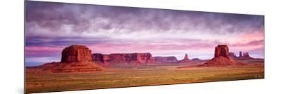 Pink Morning Glory V-David Drost-Mounted Photographic Print